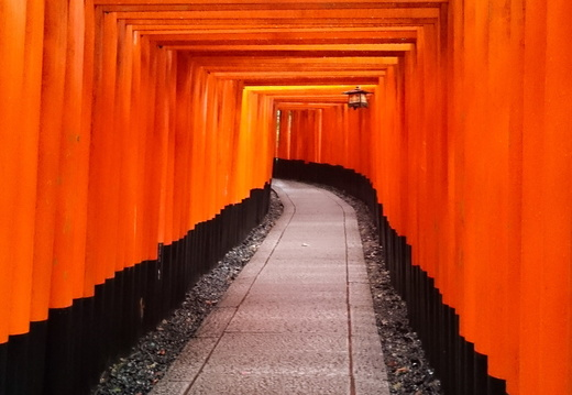 Kyoto- Fushimi Inari Taisha Shrine